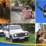 Málaga y el Safari Africano