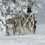 Vacaciones de invierno en Suecia