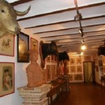 Conozca los Museos de Córdoba