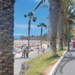Vacaciones de verano en Tenerife