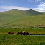 El Parque Nacional de Brecon Beacons, naturaleza y aventura