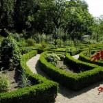 Hortus Botanicus, el jardín botánico de Amsterdam