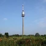 Viena desde las alturas, la Torre del Danubio