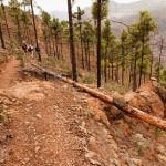 Senderismo en Montaña de Tauro en Gran Canaria