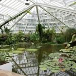 Un paseo por el Jardín Botánico Nacional de Bélgica
