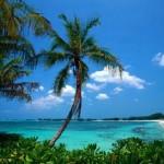 Mejores destinos de verano en España : Islas Cíes