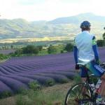 Ciclismo y aventura en Provenza