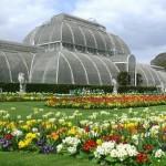 Descubre el Jardín Real Botánico de Kew