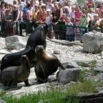 Viajar con niños a Austria