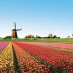 Cosas interesantes qué saber sobre Holanda