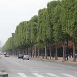 Conozca los Distritos Culturales de París