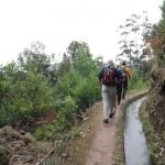 Viajar a Madeira en Portugal
