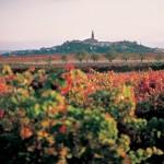 La Rioja, entre vinos y tradiciones