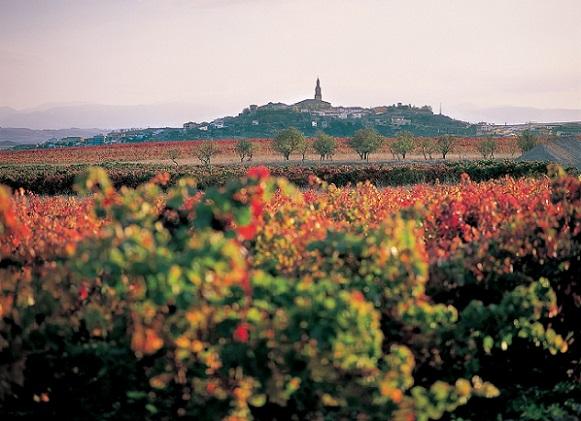 La Rioja vino