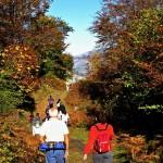 10 razones para viajar a Europa este otoño