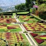 4 cosas qué hacer en Madeira en primavera 2014